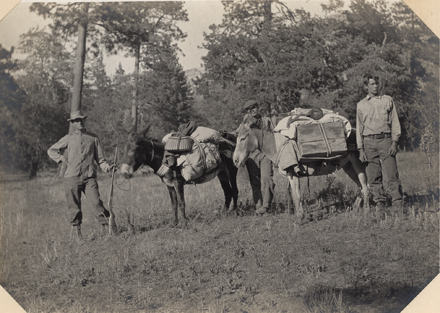 Some of the participants on the 1908 expedition in Strawberry Valley, San Jacinto Mountains. Joseph Grinnell