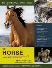 Download The Horse Educator Guide