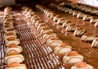 Bonbons covered in chocolate. Chocolate is mostly machine-made, not handmade. Converting cacao seeds into chocolate has now evolved into a complex and time-consuming mechanized process that includes several steps. Credit: Lindt & Sprüngli, Switzerland