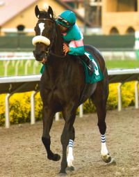 Jockey Mike Smith rode Zenyatta in 17 of her 20 career races, including her three victories at Del Mar.