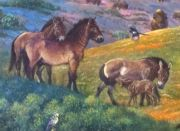 Equus occidentalis (Western Horse), detail from William Stout mural in Fossil Mysteries