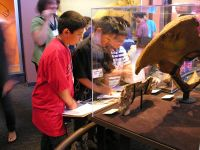 Students in Fossil Mysteries exhibit